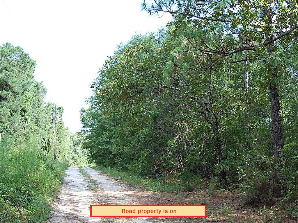 Three-Quarter Acre Tuskegee Rural Living - Image 5