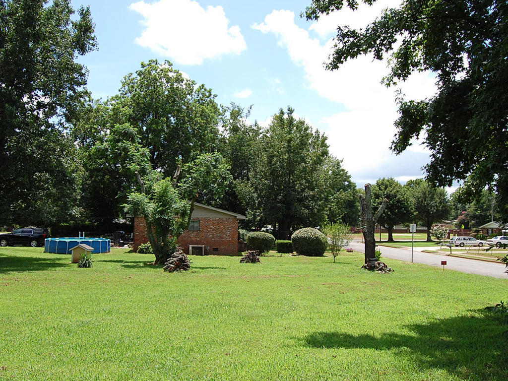 Residential Lot in Decatur - Image 3