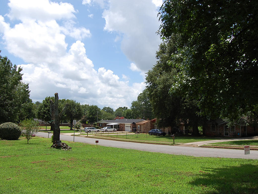Residential Lot in Decatur - Image 4