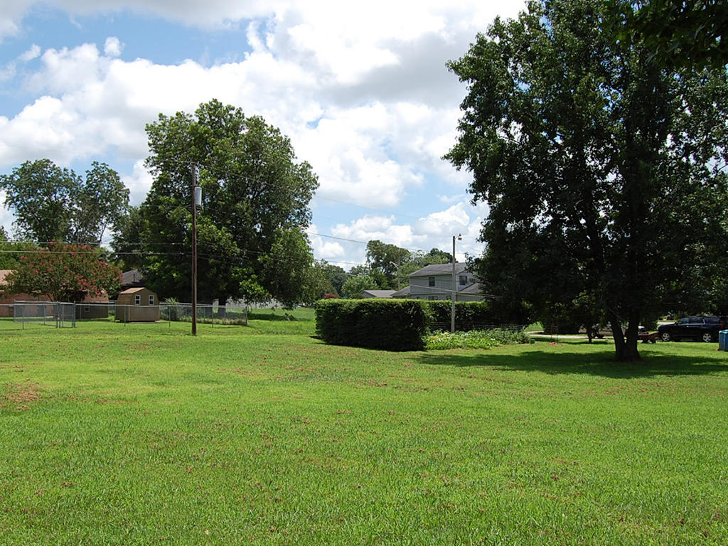 Residential Lot in Decatur - Image 1