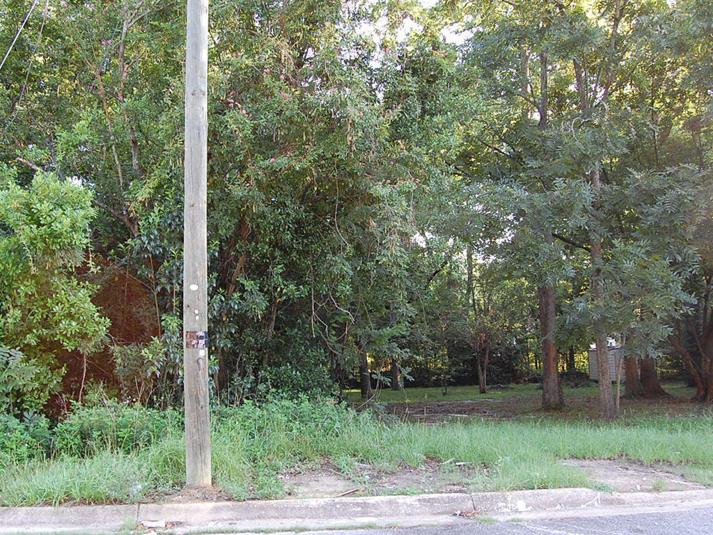 Beautiful and Convenient Getaway in Dothan - Image 0