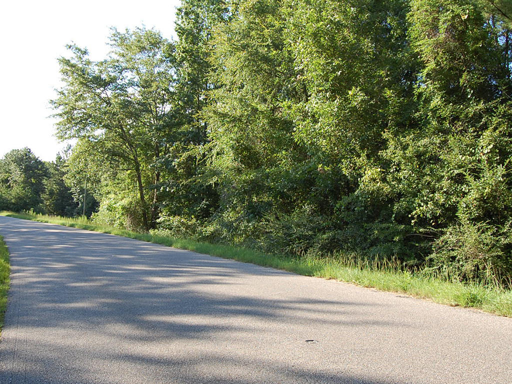 Rustic Charmer in Rural Alabama - Image 5