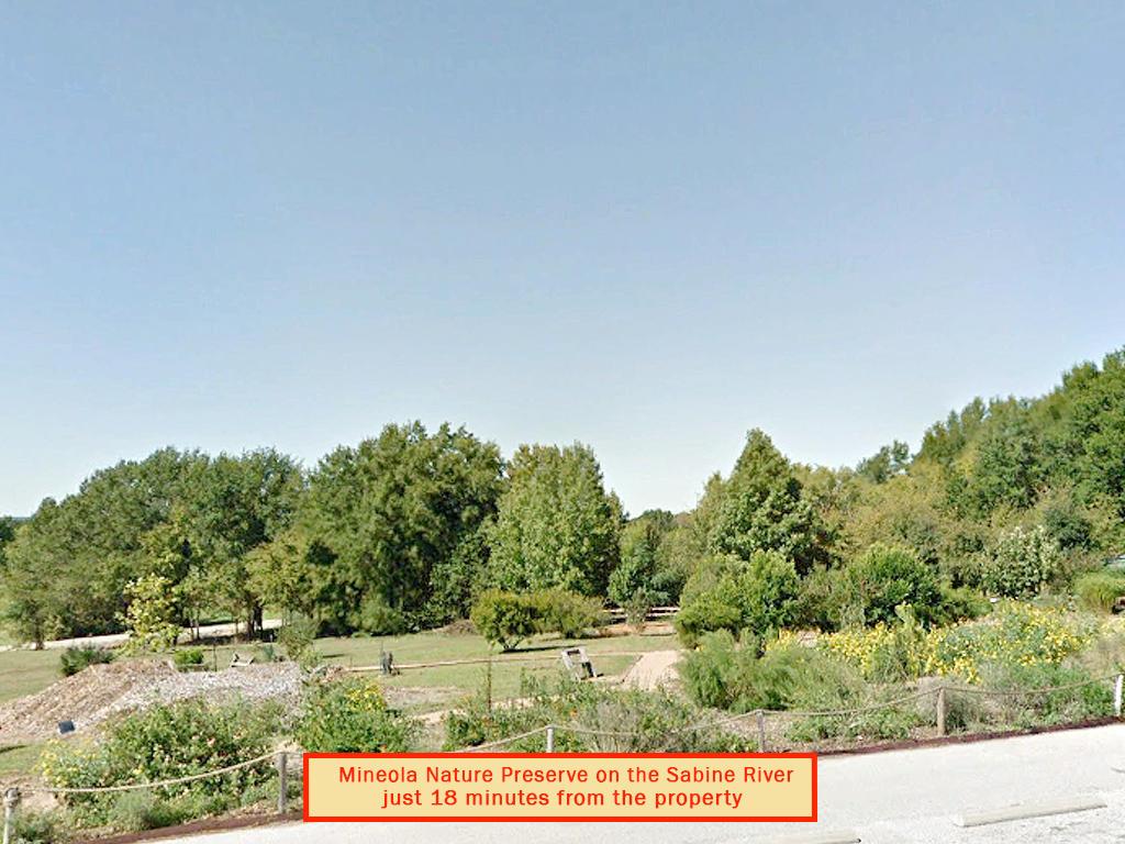 Quarter Acre Lot in Mineola - Image 6