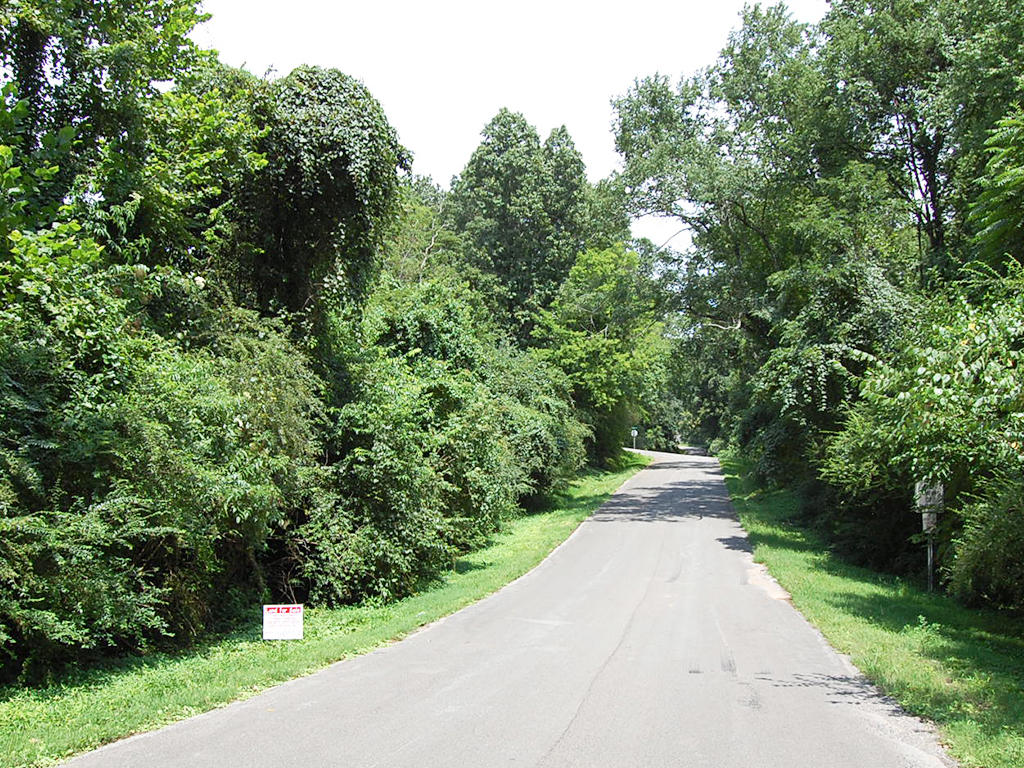 Residential Lot Minutes from the Tennessee River - Image 5