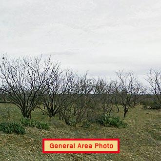 Rural Texas Acre Near Beautiful Lake - Image 1