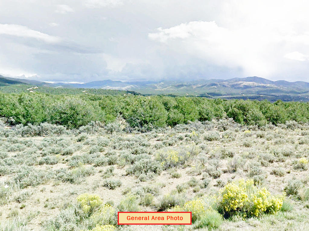 Five Acre Property in Beautiful Southern Colorado - Image 3