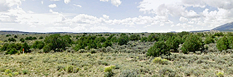 Five Acre Property in Beautiful Southern Colorado
