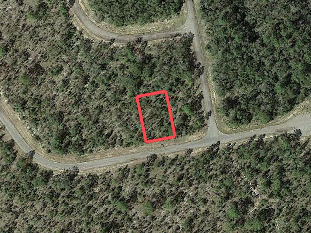 Florida Pan Handle Property on Paved Road - Image 2