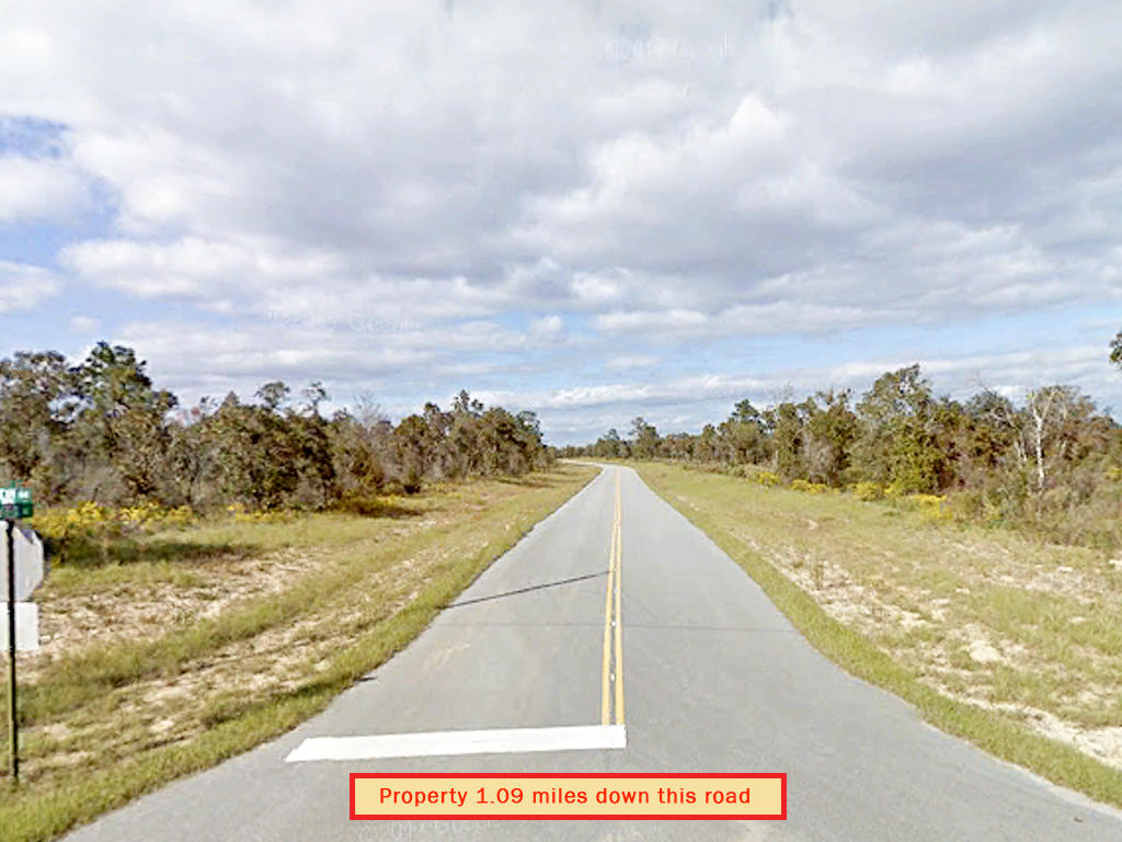 Florida Pan Handle Property on Paved Road - Image 5