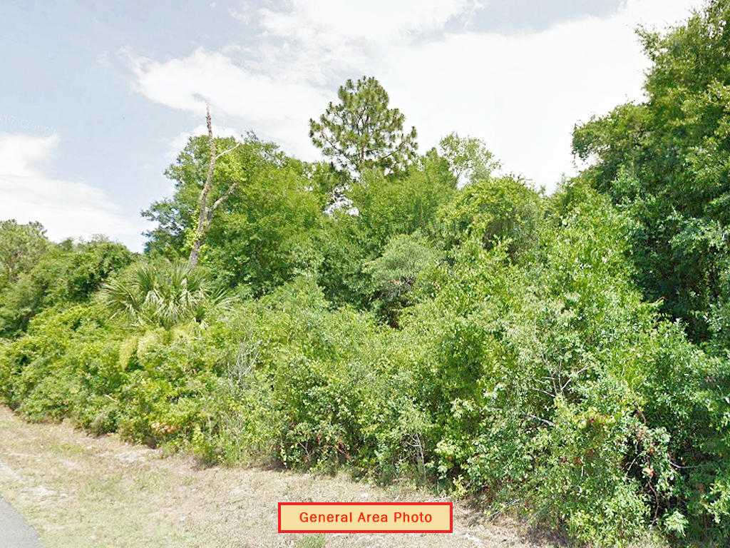 Over 1 Acre With Legal Access - Image 4