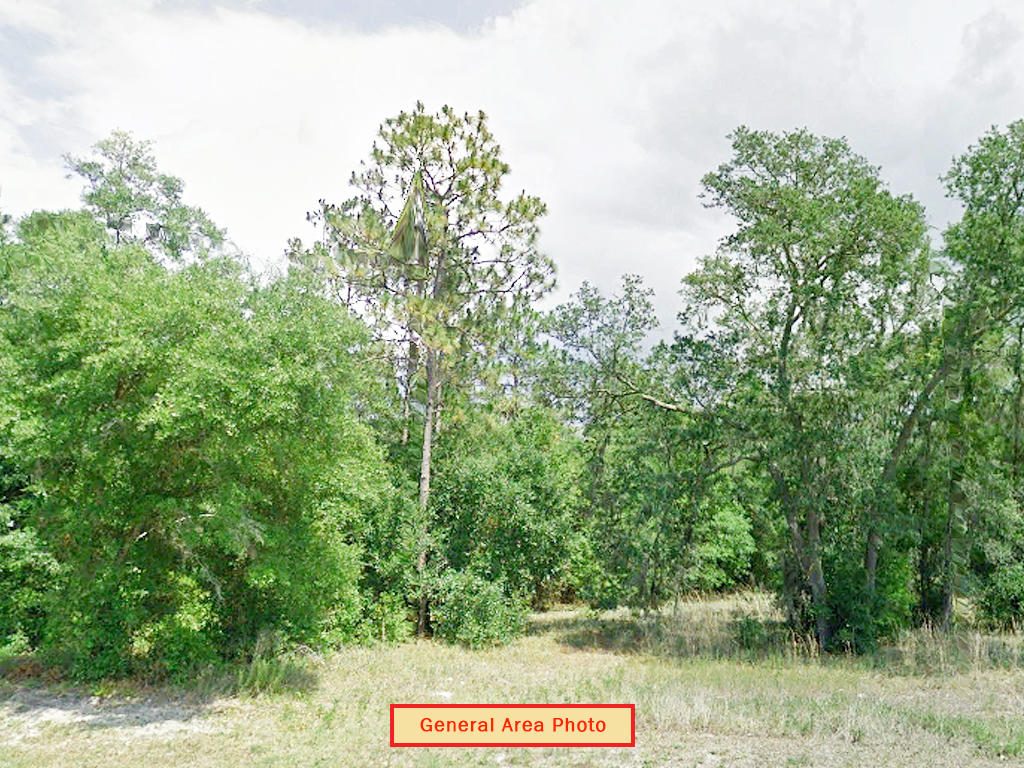 Over 1 Acre With Legal Access - Image 1