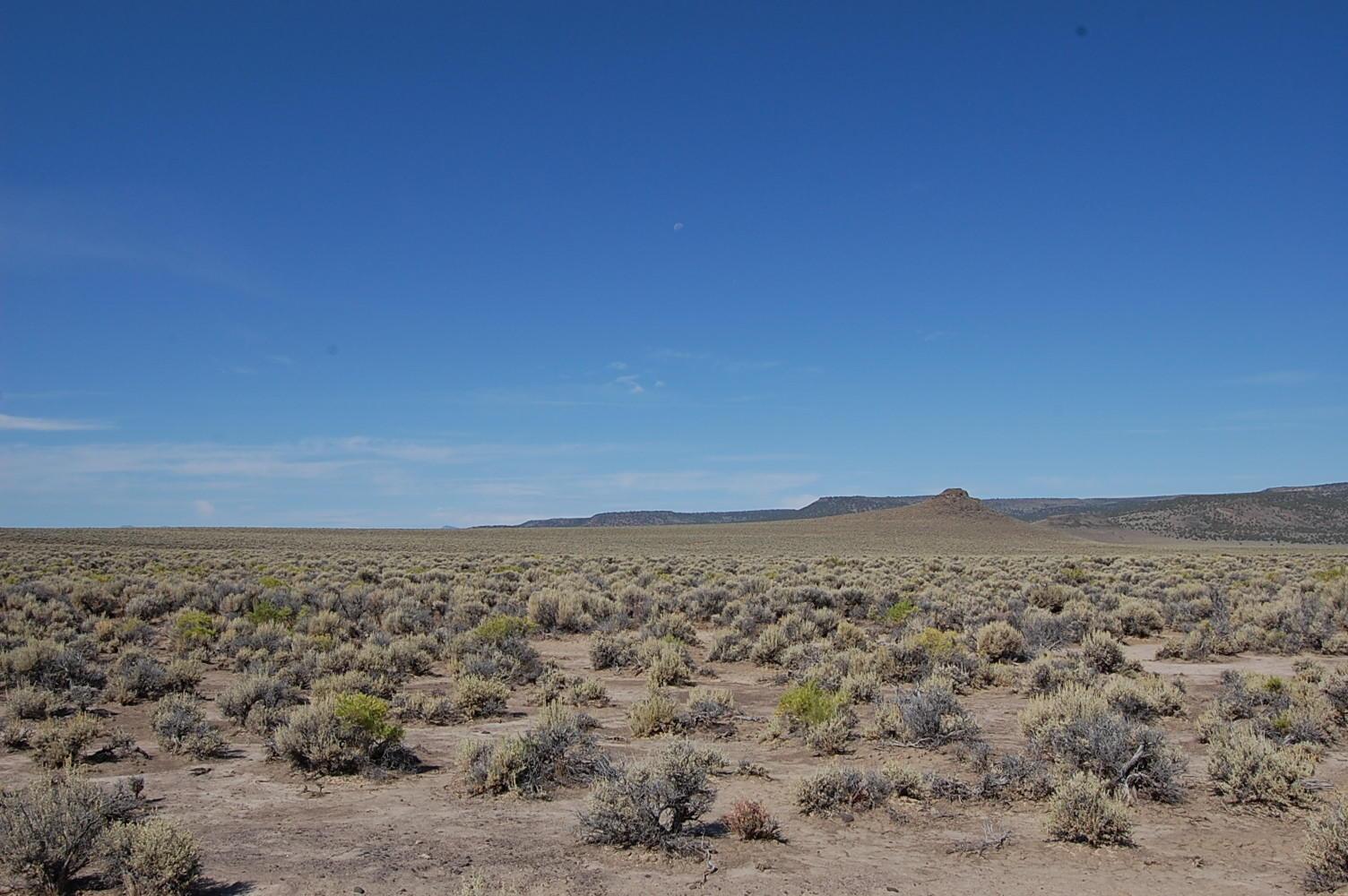 80 Acre Getaway in Northern Nevada - Image 3