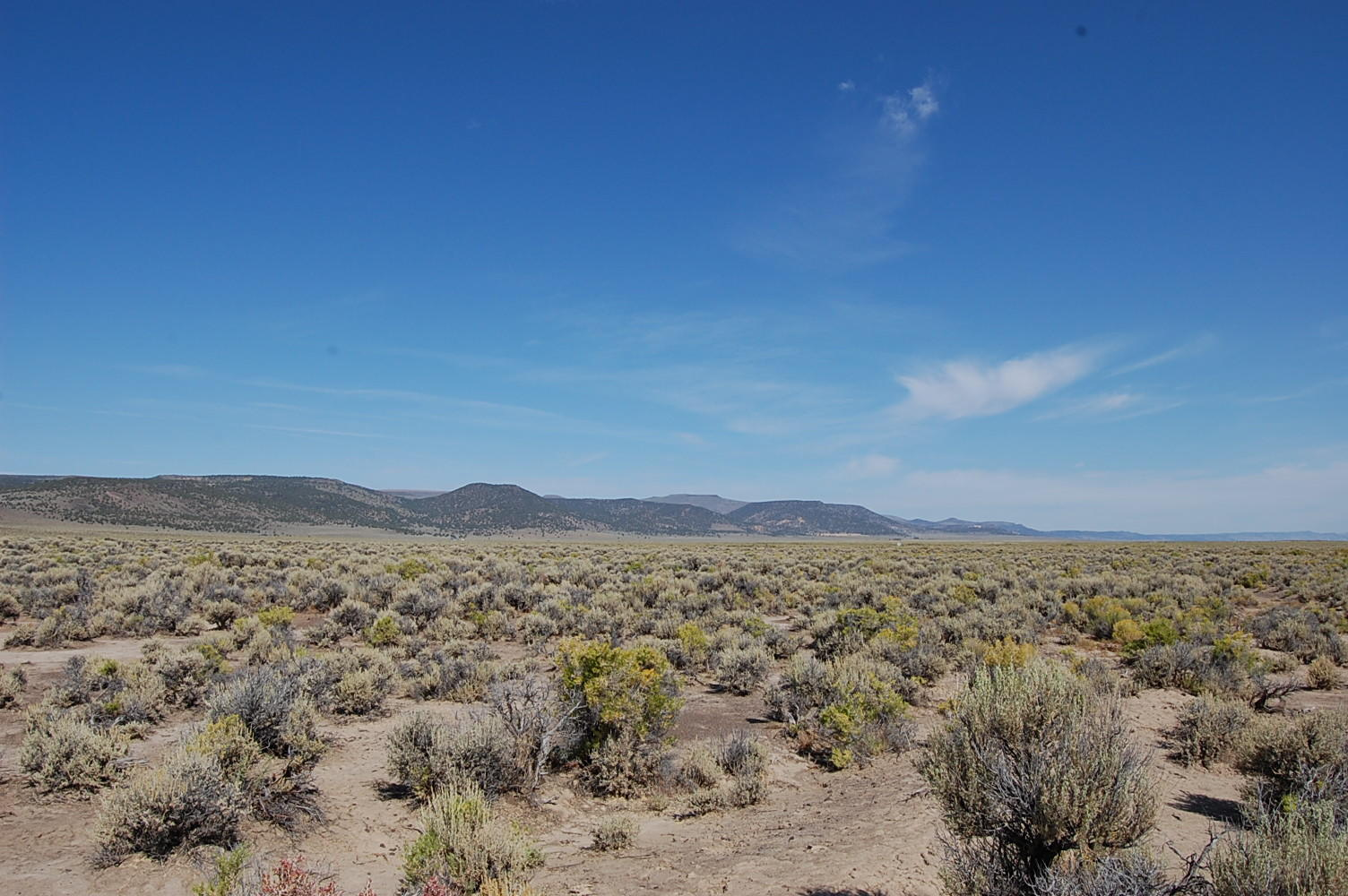 80 Acre Getaway in Northern Nevada - Image 0