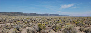 80 Acre Getaway in Northern Nevada - Image 6