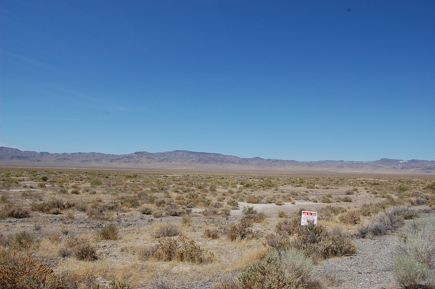 Large Acreage Parcel With Paved Road Access - Image 1