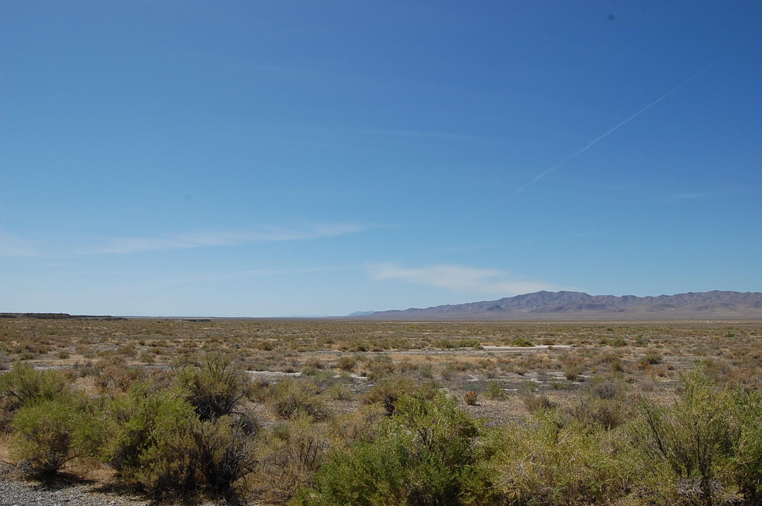 Sprawling 40 acres in rural Nevada - Image 4