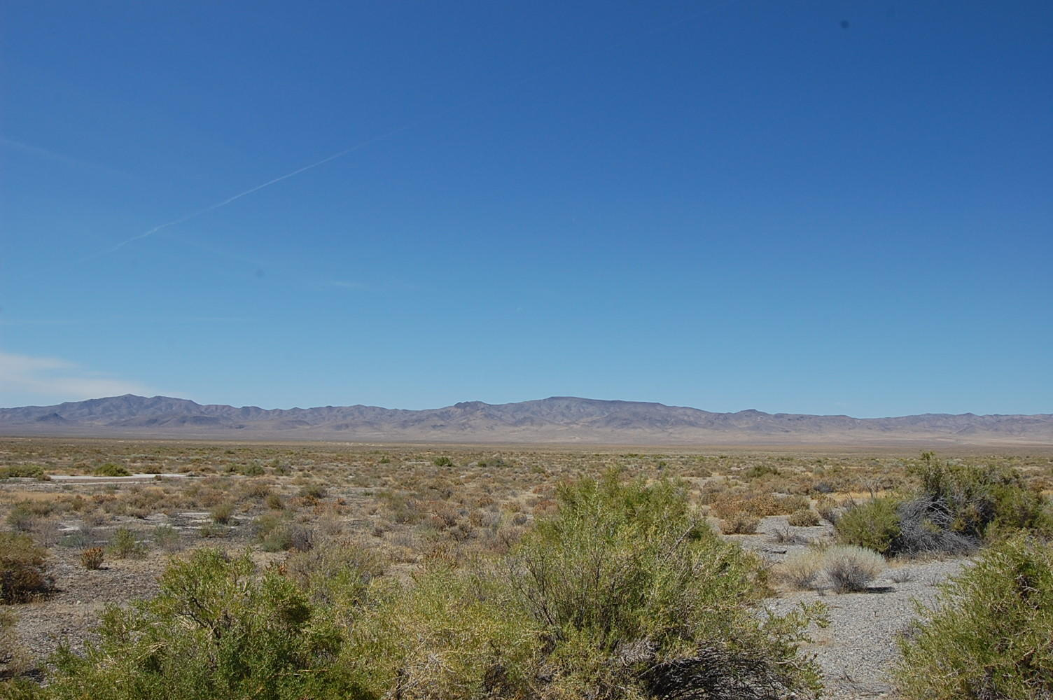 Sprawling 40 acres in rural Nevada - Image 0