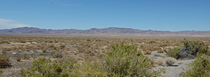 Sprawling 40 acres in rural Nevada