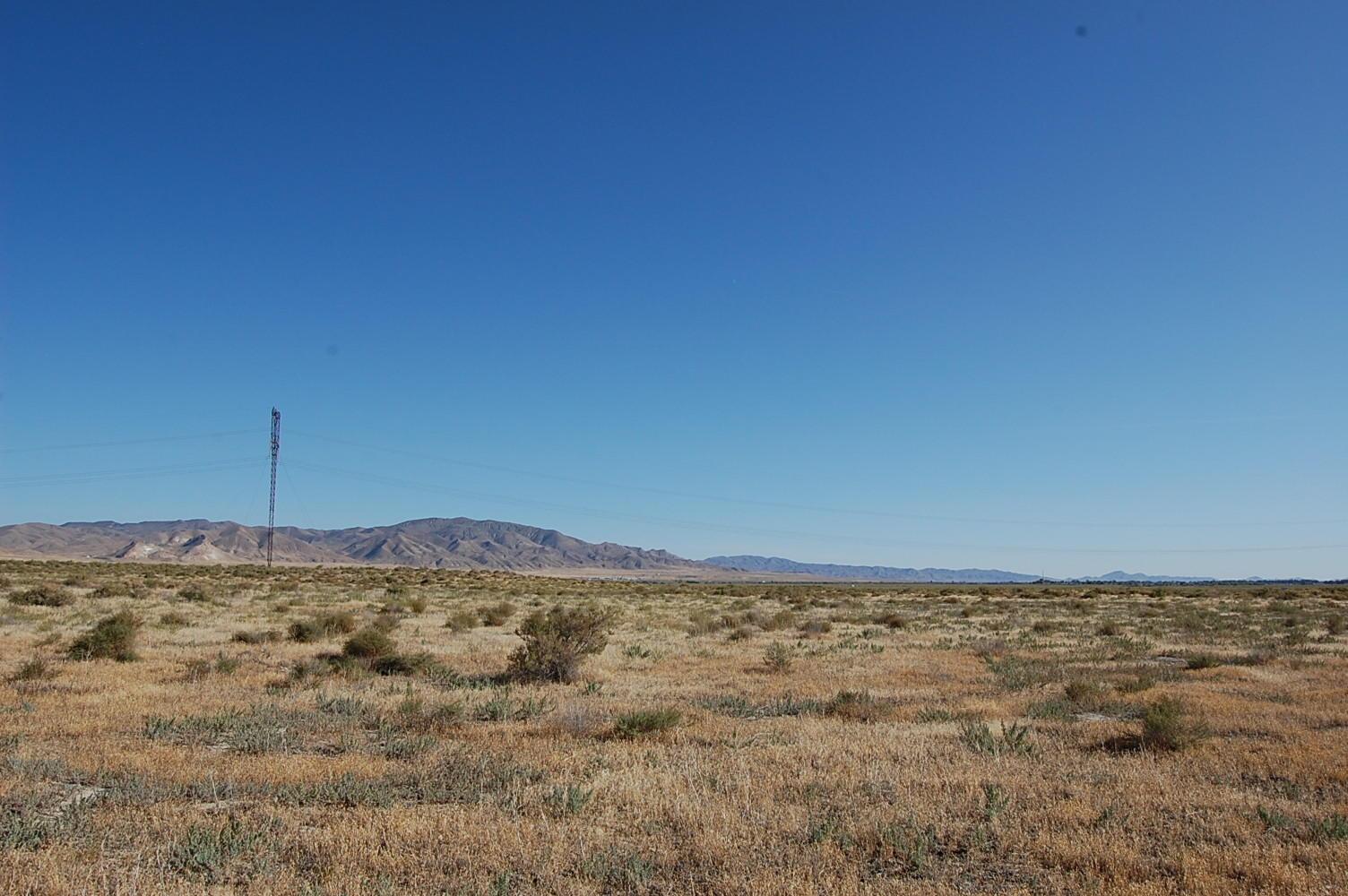 Stunning 40 Acres of Rich Desert Land - Image 4