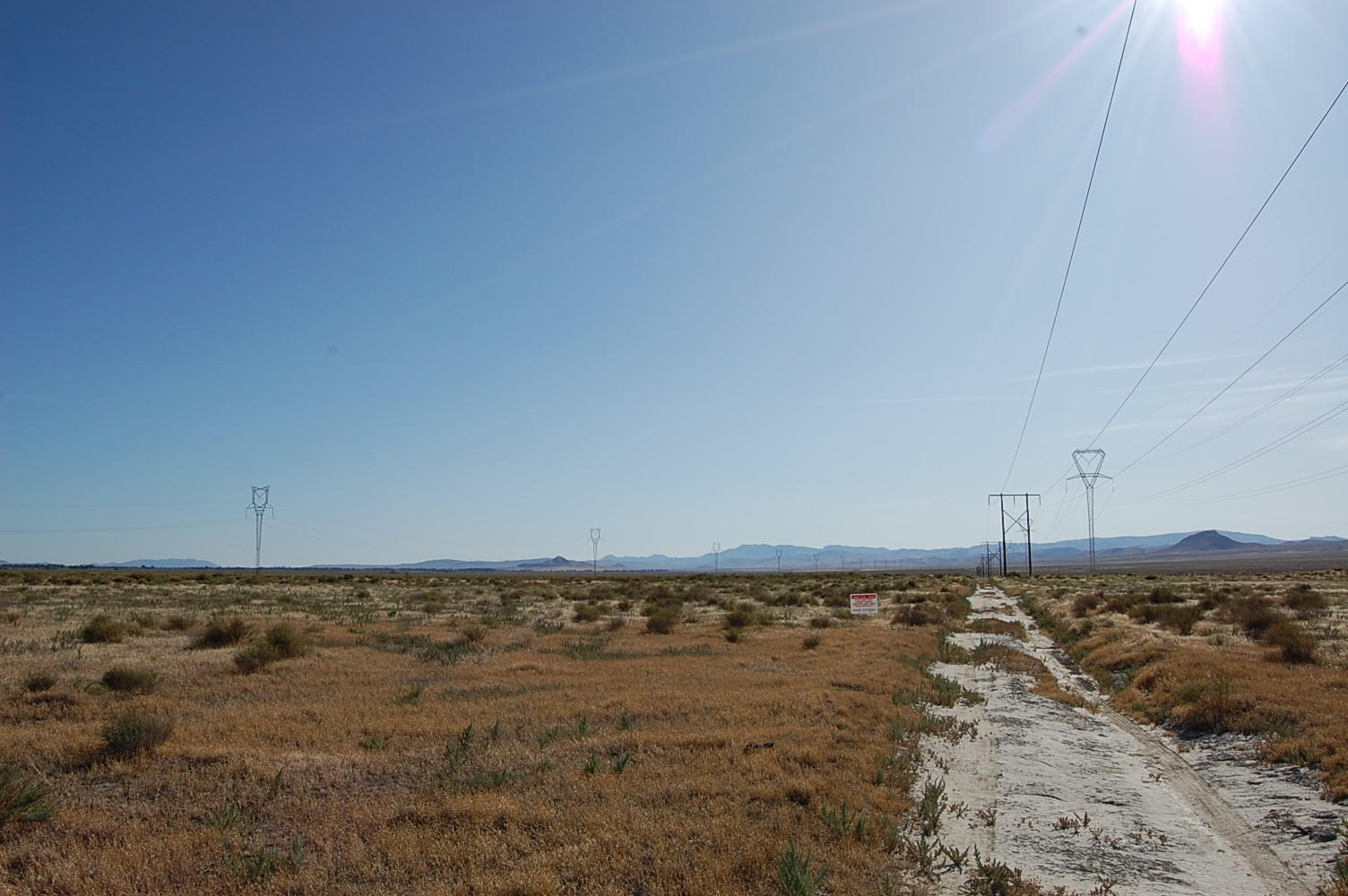 Stunning 40 Acres of Rich Desert Land - Image 5