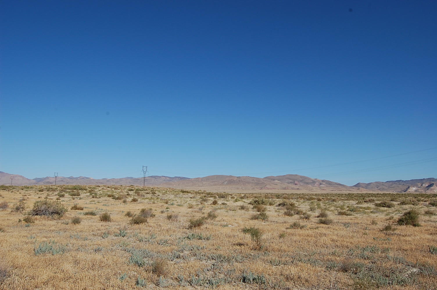 Stunning 40 Acres of Rich Desert Land - Image 0