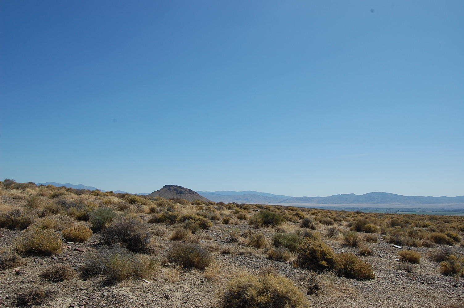 Over 40 Acres in Western Nevada - Image 4