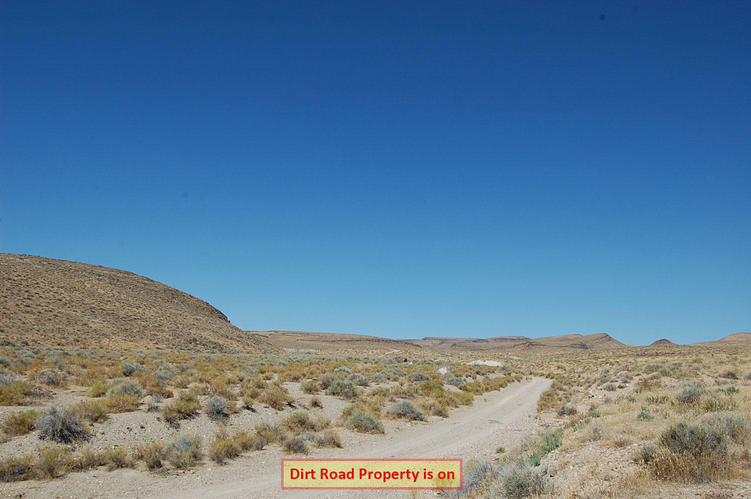 Over 40 Acres in Western Nevada - Image 5
