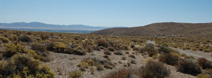 Over 40 Acres in Western Nevada