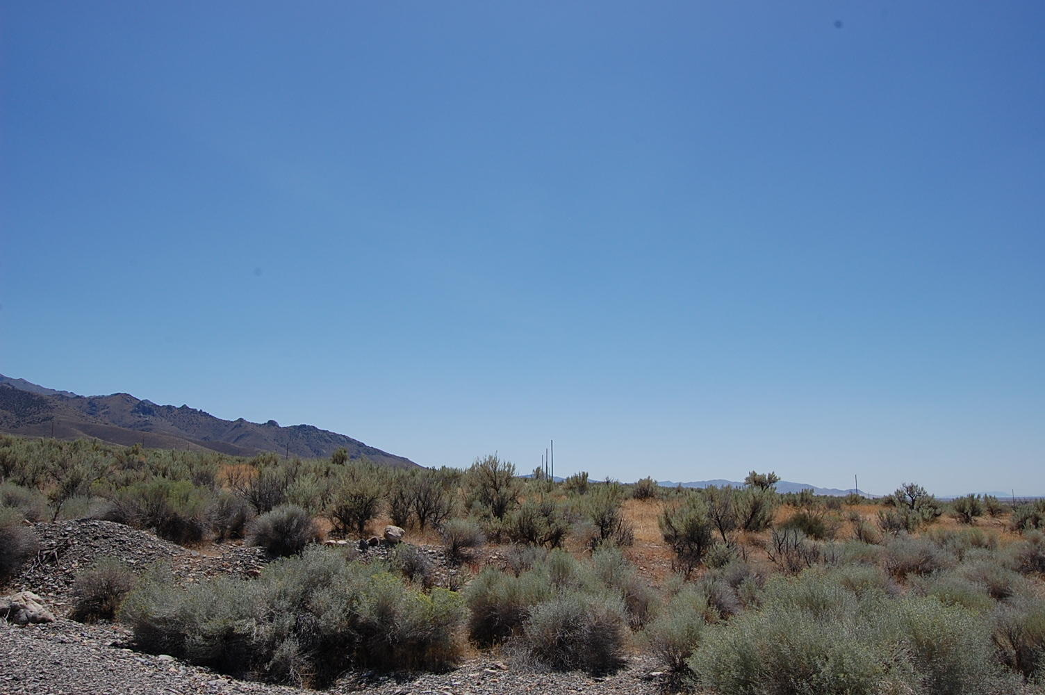 Abundant Beauty Surrounding More Than Two Acres - Image 1