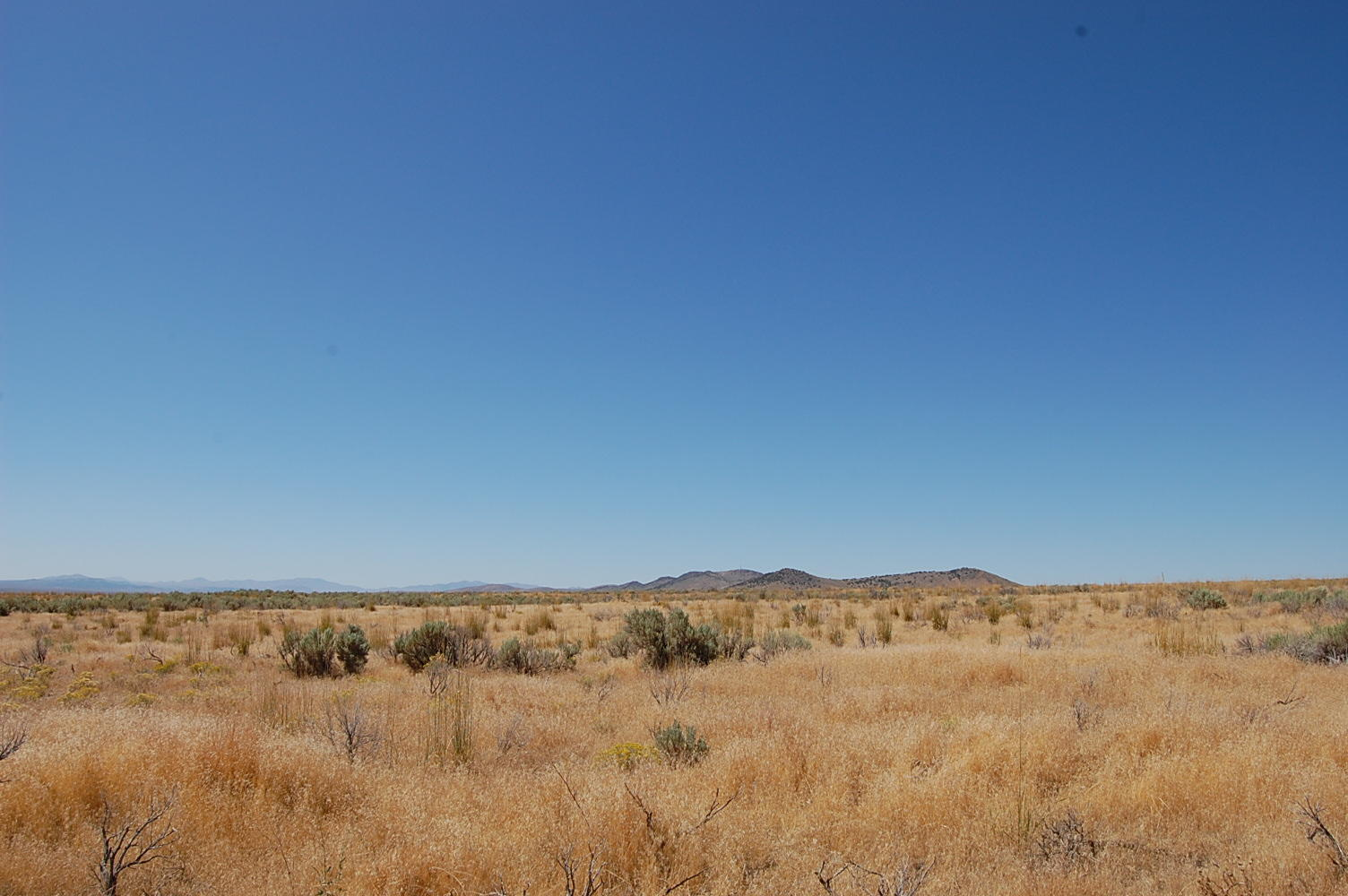 Very Private 1+ Acre Hideout Near Elko and Spring Valley - Image 3