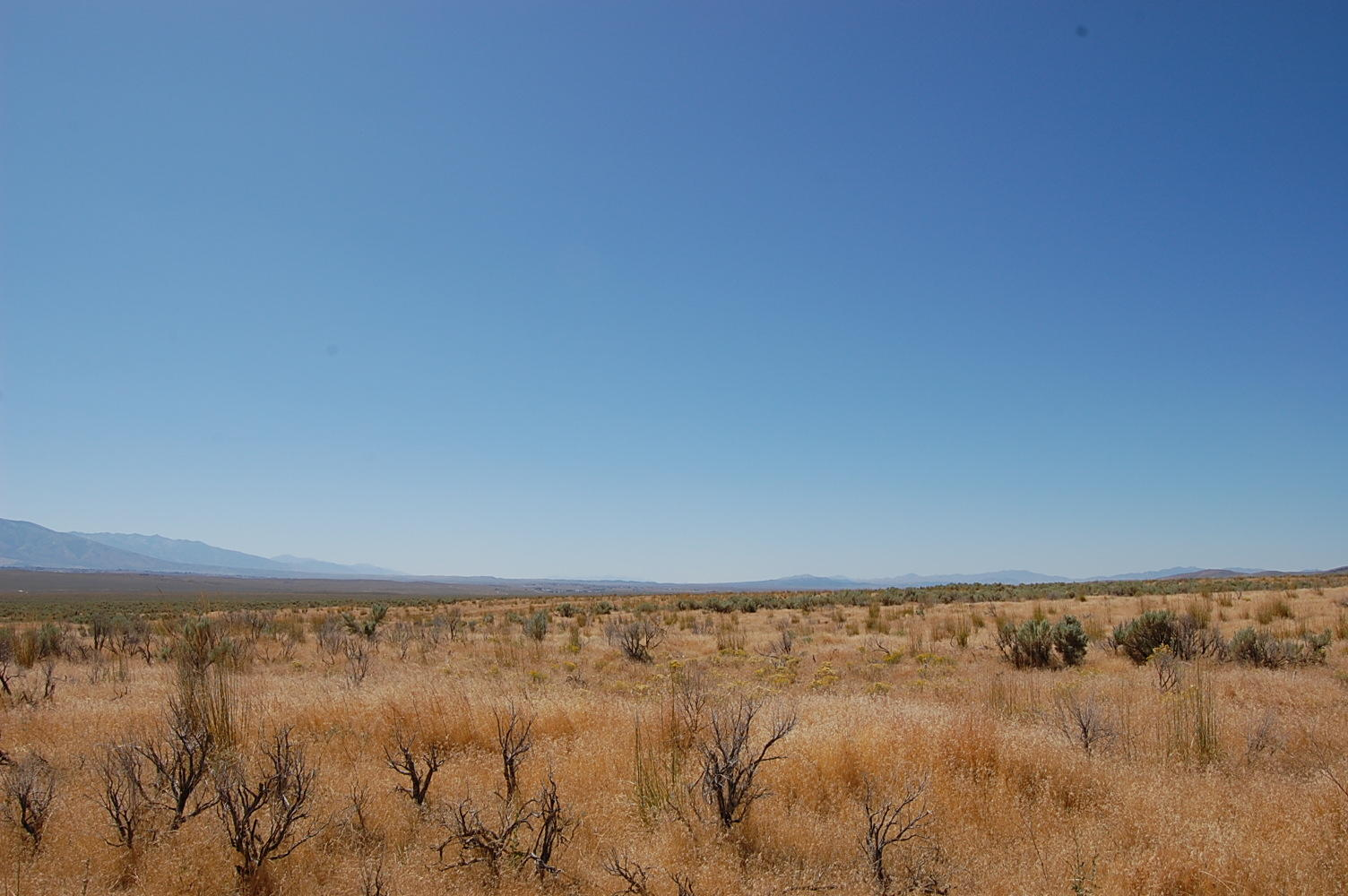 Very Private 1+ Acre Hideout Near Elko and Spring Valley - Image 4