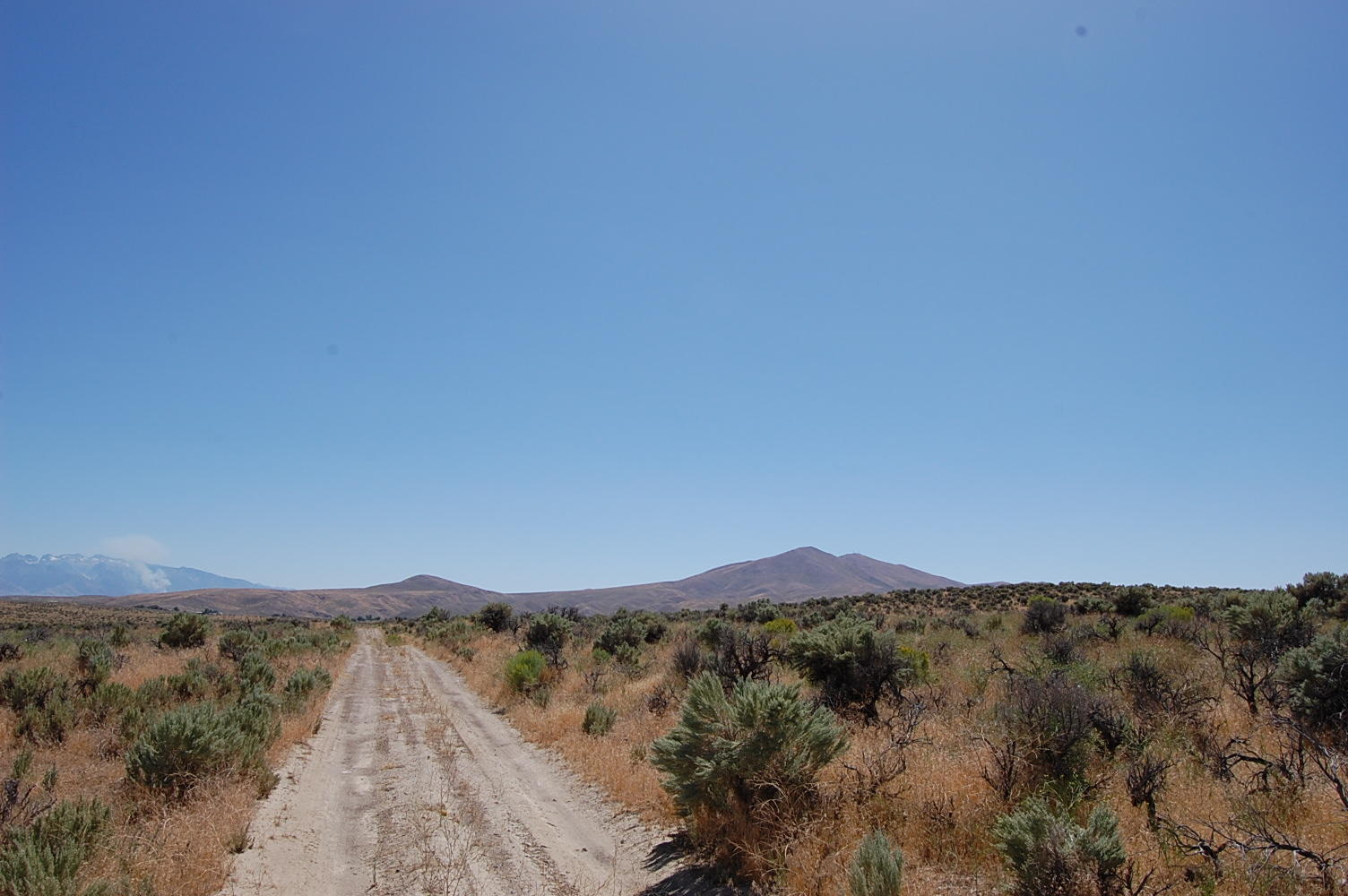 2+ Acre Escape About 20 Minutes from Elko - Image 5
