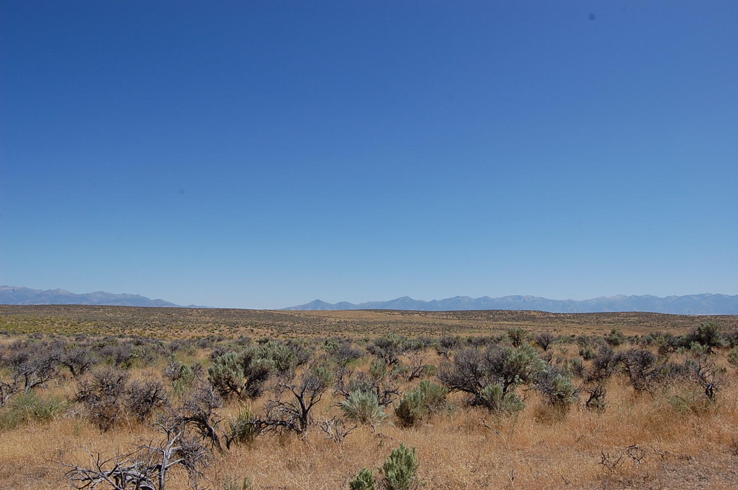 2+ Acre Escape About 20 Minutes from Elko - Image 1