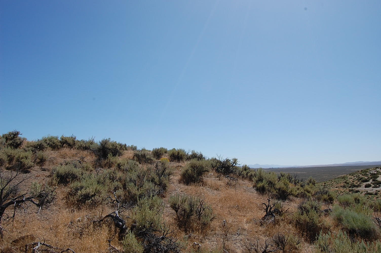 Stunning 1 Acre Property in Majestic Nevada Wilderness - Image 1