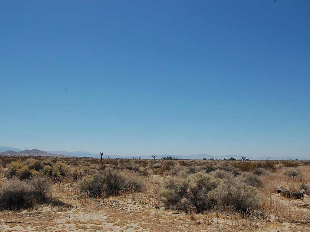 Five Acres of Land Less than 24 Miles from Palmdale - Image 4
