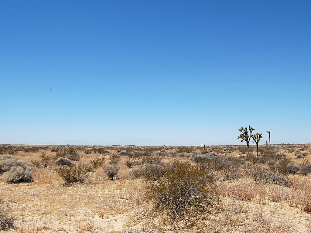 Five Acres of Land Less than 24 Miles from Palmdale - Image 1