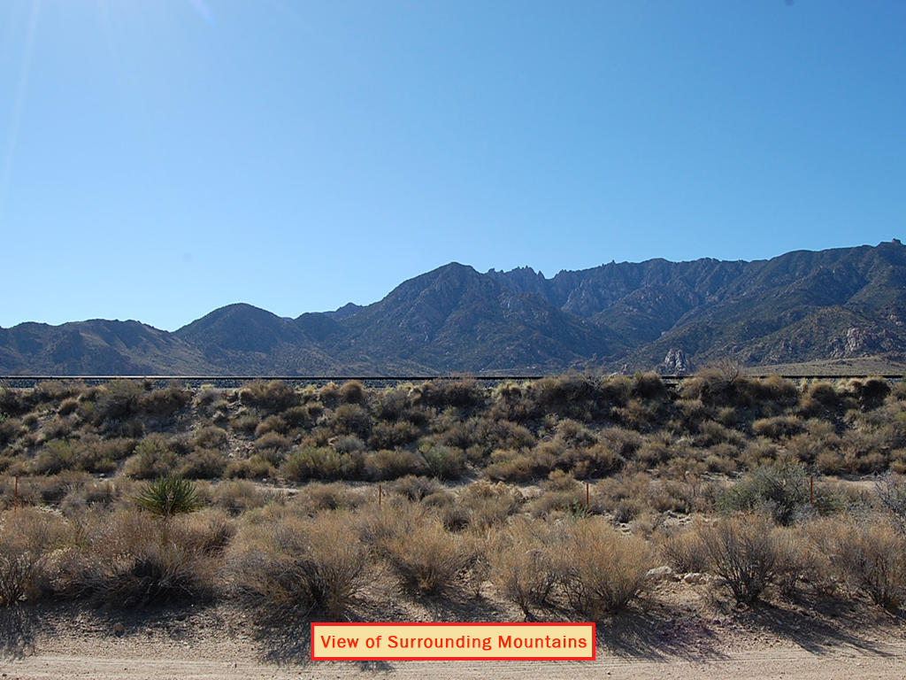 Nearly 40 Acres in Eastern California, 90 minutes from Las Vegas - Image 3
