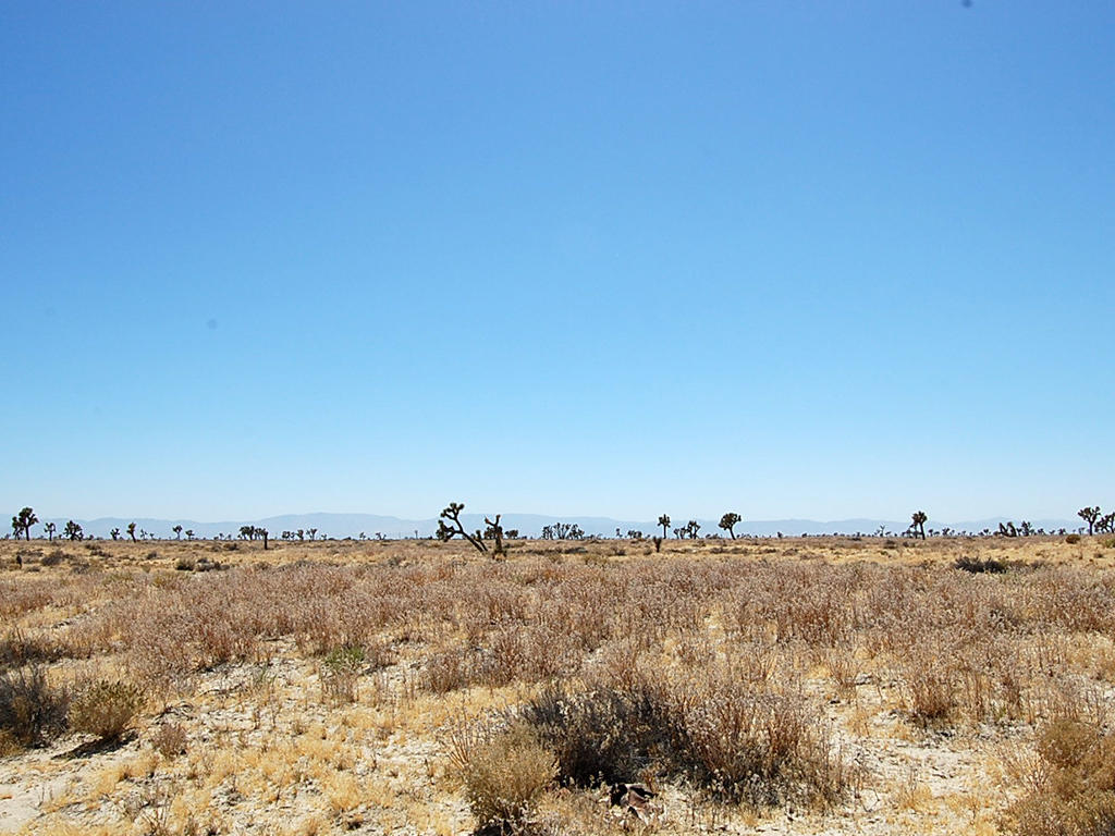 Over Two Acres of Land About 11 Miles from Lancaster - Image 0