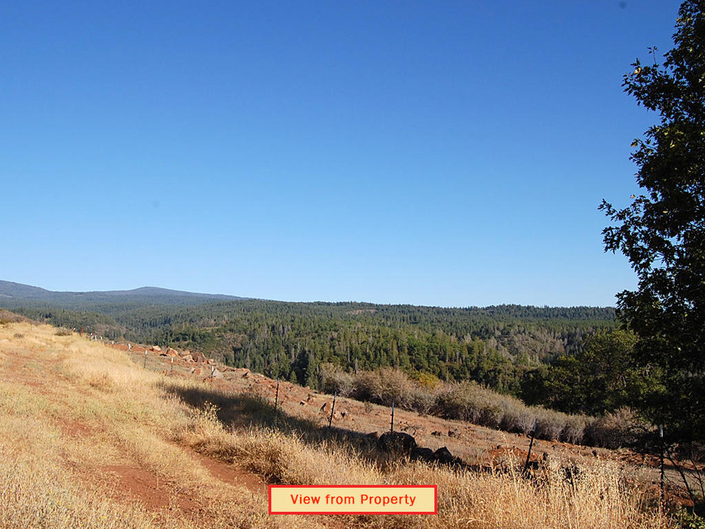 Find Your Adventure in Sunny Northern California - Image 5
