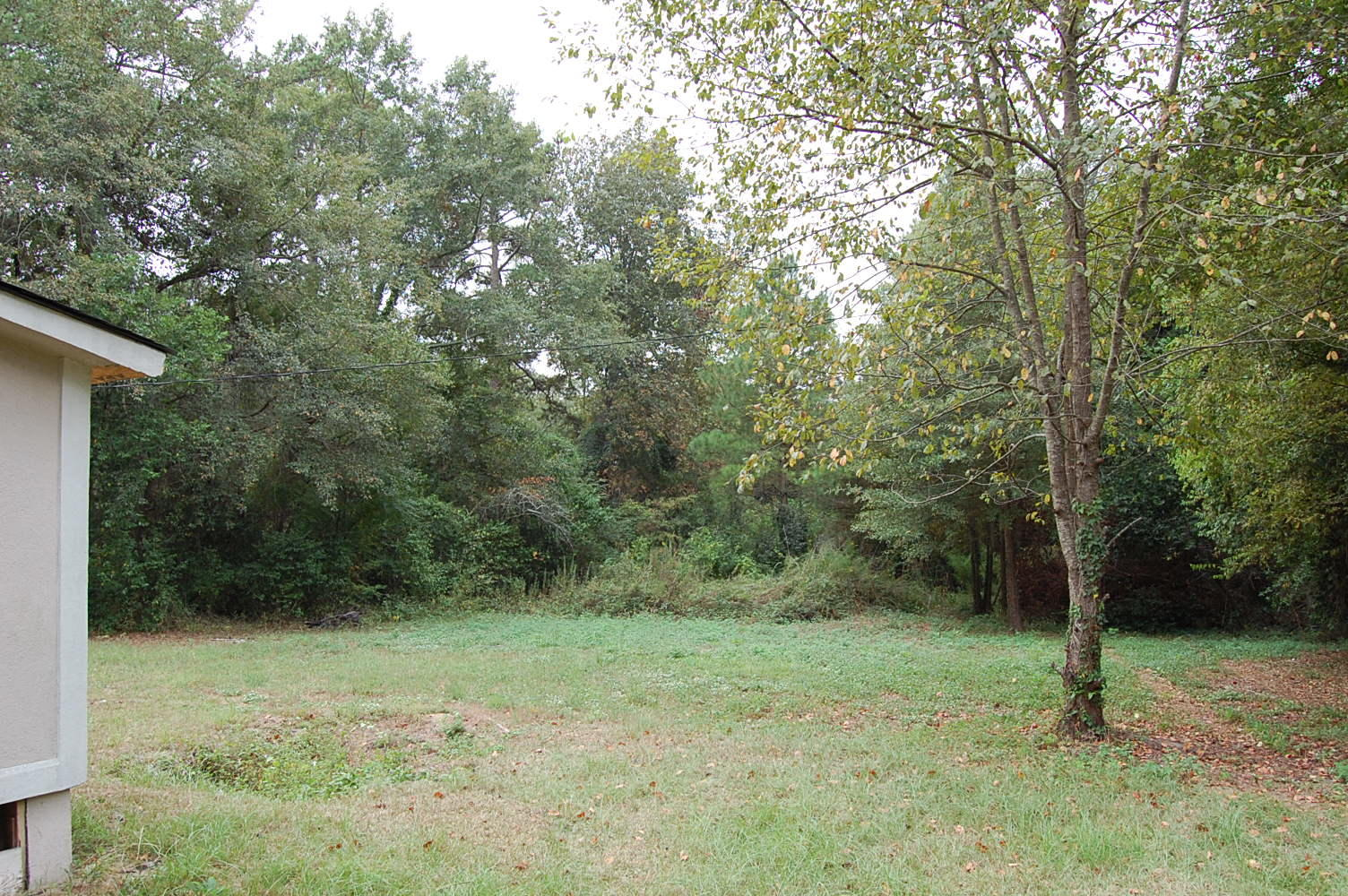 Over a Half Acre in Columbia - Image 1
