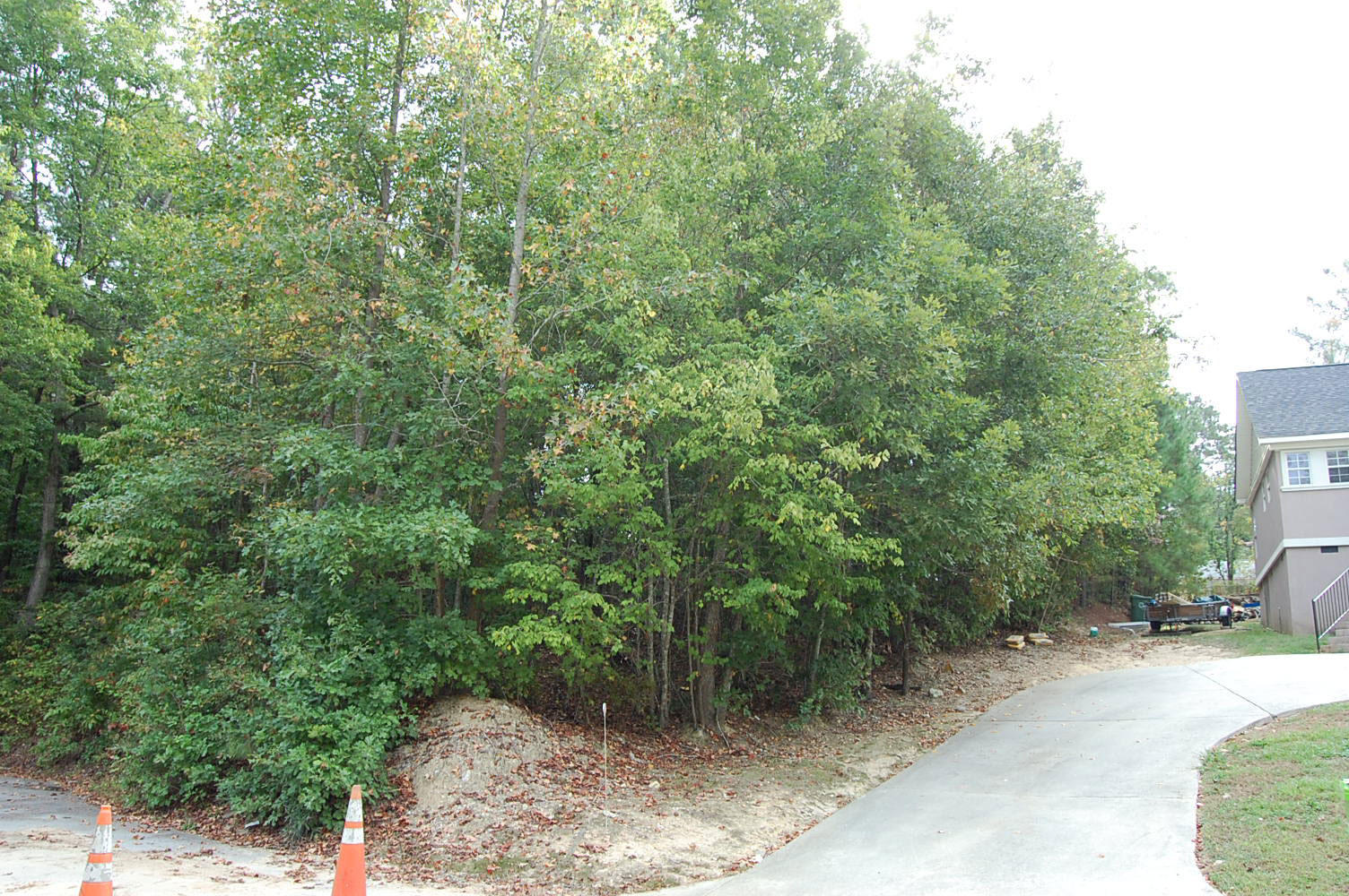 Over a quarter acre in Columbia - Image 0