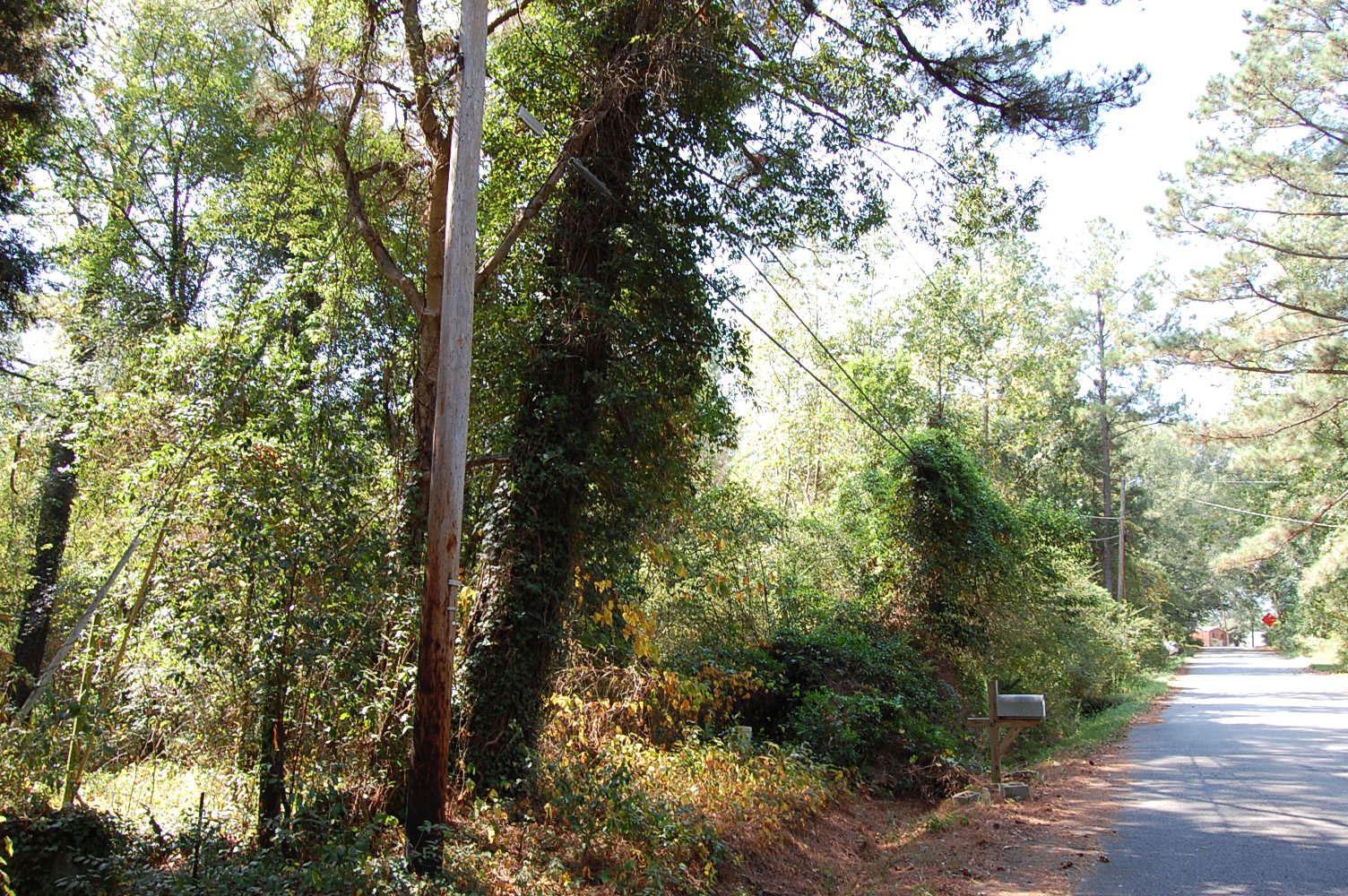 Columbia South Carolina Suburb Property - Image 1