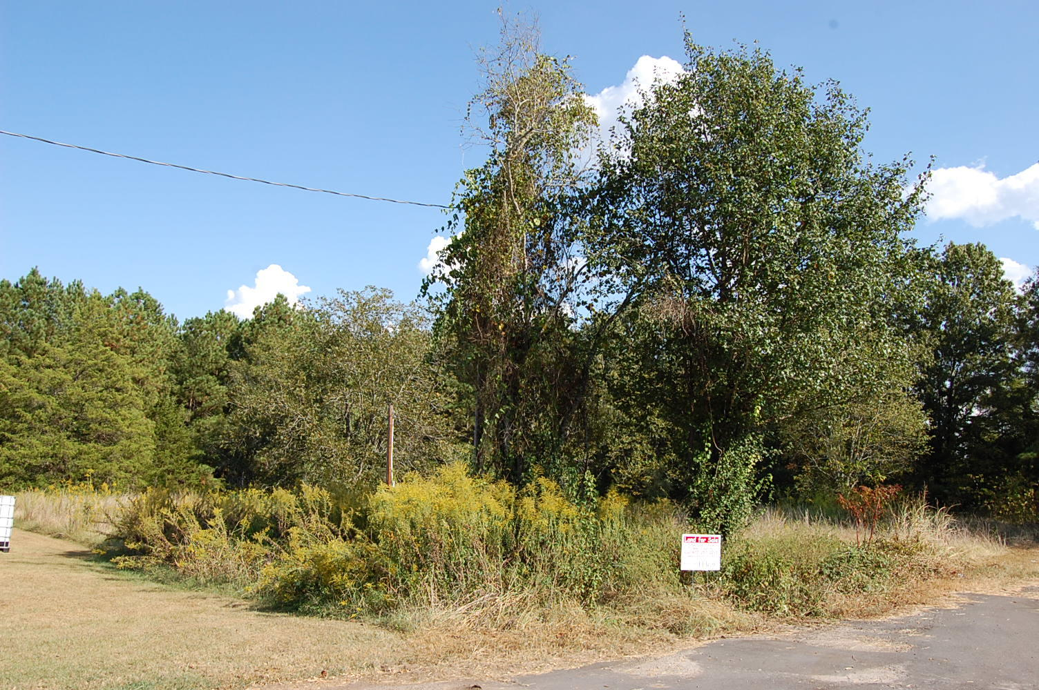 Ideal Residential Lot on Dead End Street - Image 5