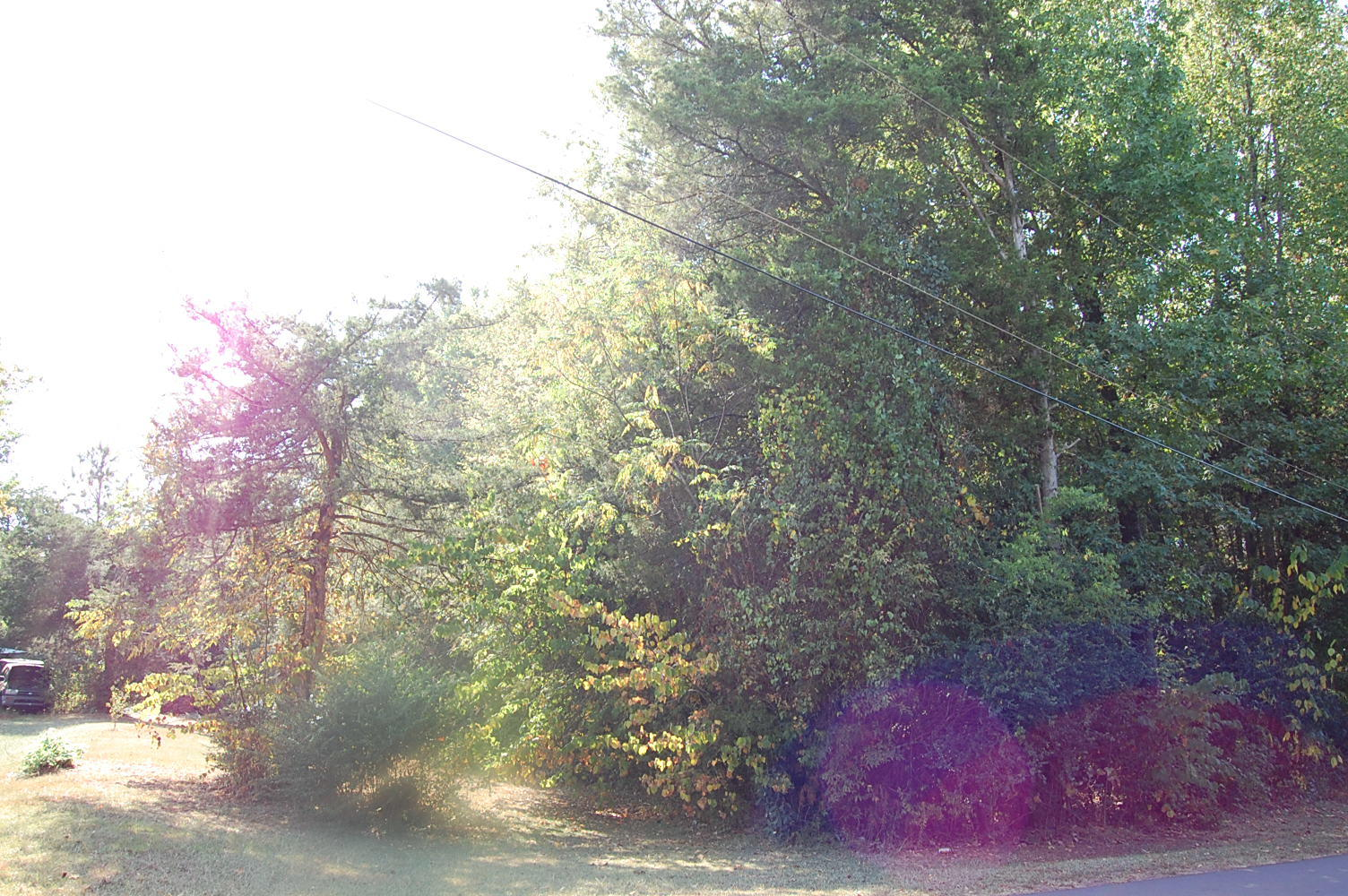 Stunning Lakeside Lot in Charming Community - Image 5