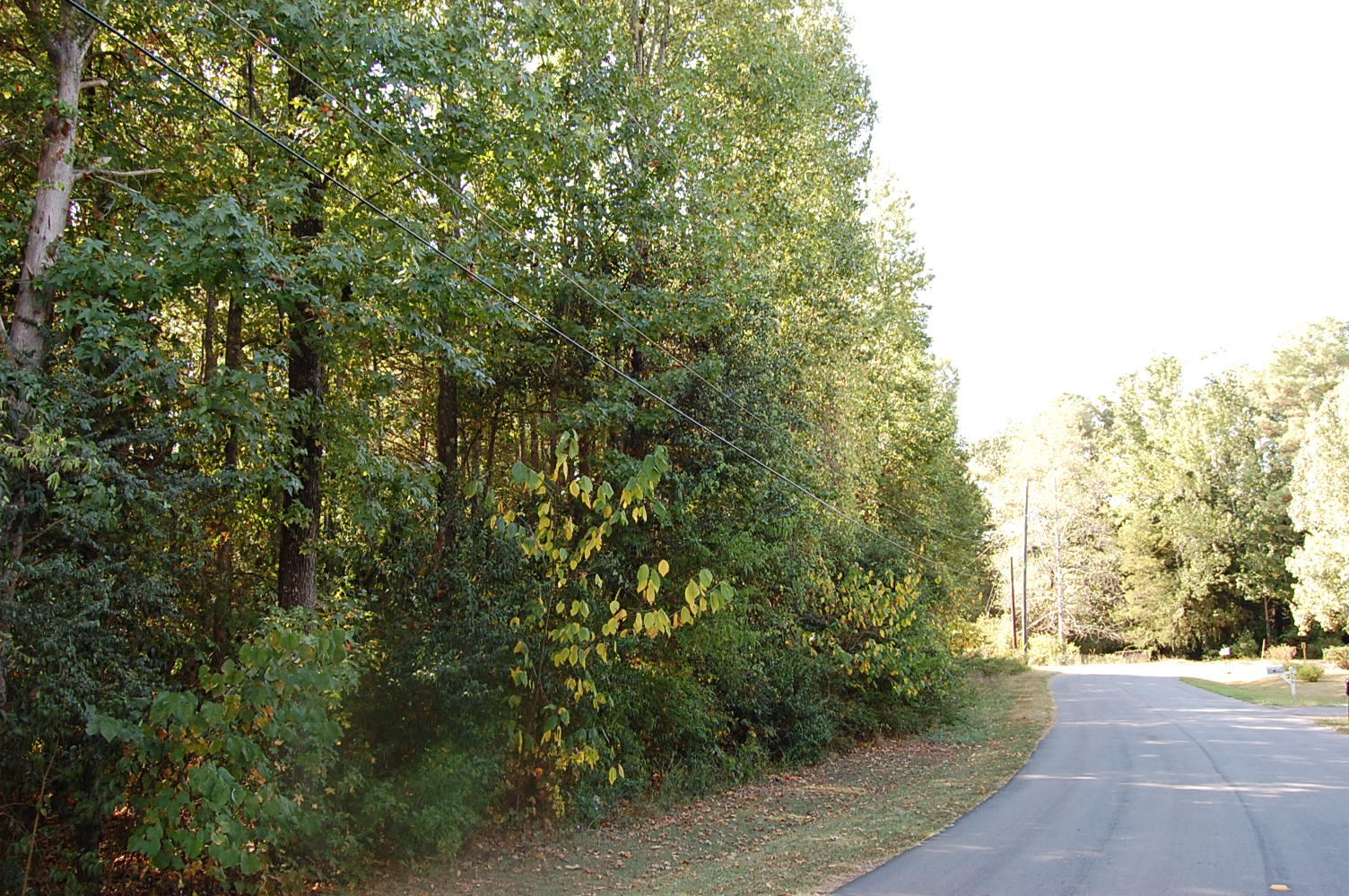 Stunning Lakeside Lot in Charming Community - Image 1