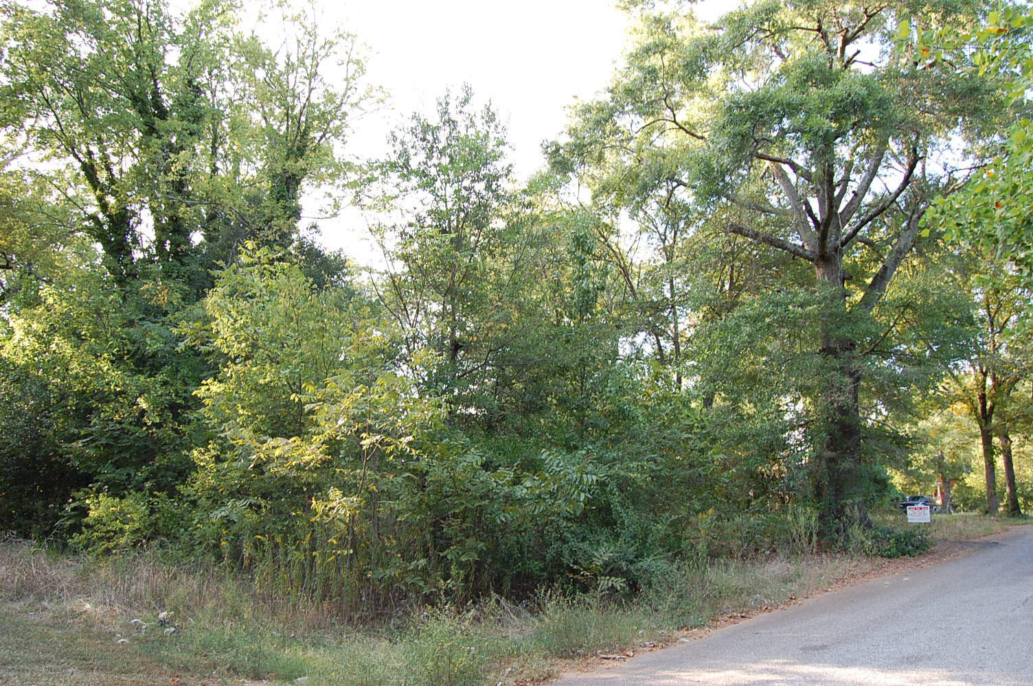 Small plot in the growing suburban city of Anderson - Image 5