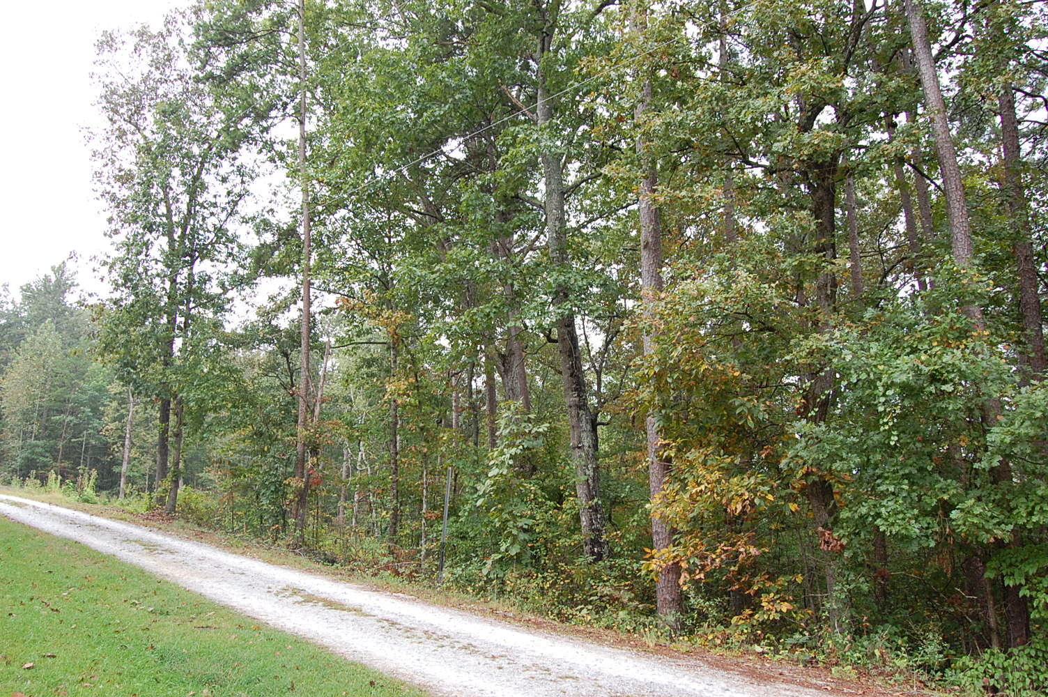 Over One Acre Madison South Carolina River Side Property - Image 0