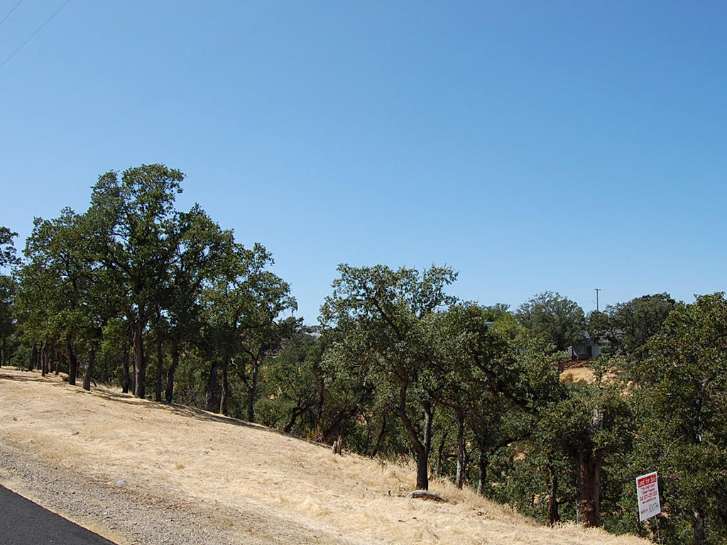 Lovely Residential Lot near Sacramento River - Image 3