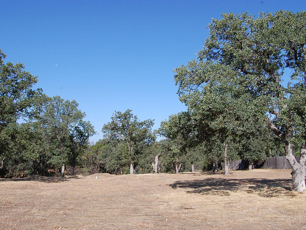 Join a Beautiful Northern California Community with Tons of Amenities - Image 3