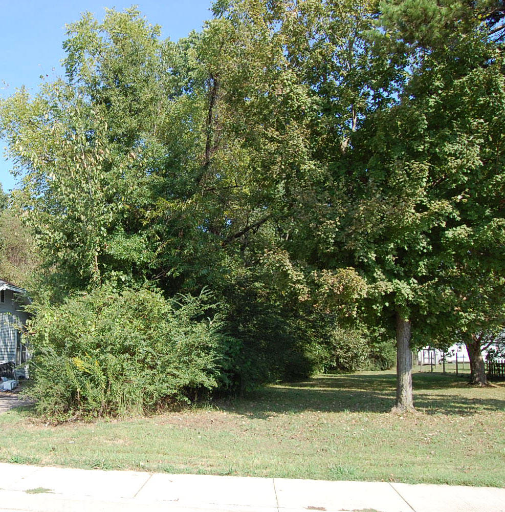 Amazing Residential Lot in Jackson - Image 4